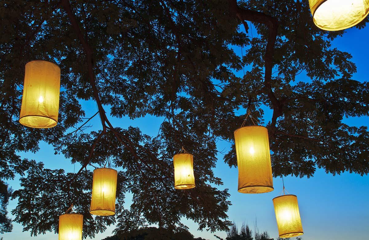 灯火を提げた木